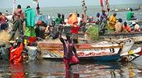 Le retour des pêcheurs de Joal